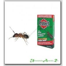 Capcana speciala pentru combaterea furnicilor - Protect