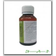 Insecticid ecologic/universal - Insektum 100ml