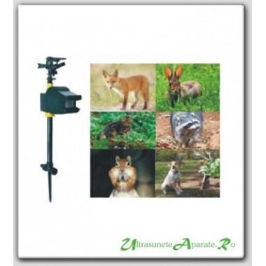 Protejeaza gradina si gazonul de caini si mizeria acestora cu ajutorul apei (10 mp)