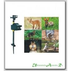 Protejeaza gazonul de vrabiile nazdravane cu Water Blaster Solar